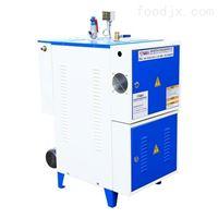 小型电热式蒸汽发生器
