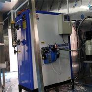 LWS0.1-0.7-Y.Q全自动100kg燃气蒸汽发生器免报检锅炉