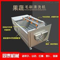 TQX-7000小型清洗白蘿卜圓蘿卜土豆去皮機紅薯脫皮機