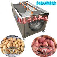 TQX-1000全自动萝卜魔芋土豆红薯清洗脱皮机