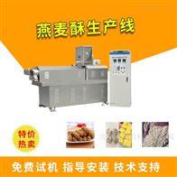 TSE65多功能小型燕麦酥生产线
