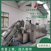 LW-40HMV立威大豆微波灭活设备 大豆灭活机