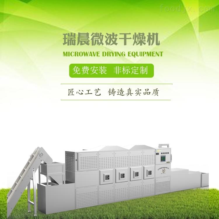 小型隧道式苹果片微波膨化设备生产线