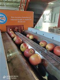 库尔勒香梨重量大小糖度分选生产线