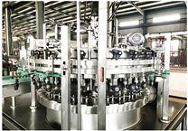 全自动饮用水净化水处理设备厂家直供