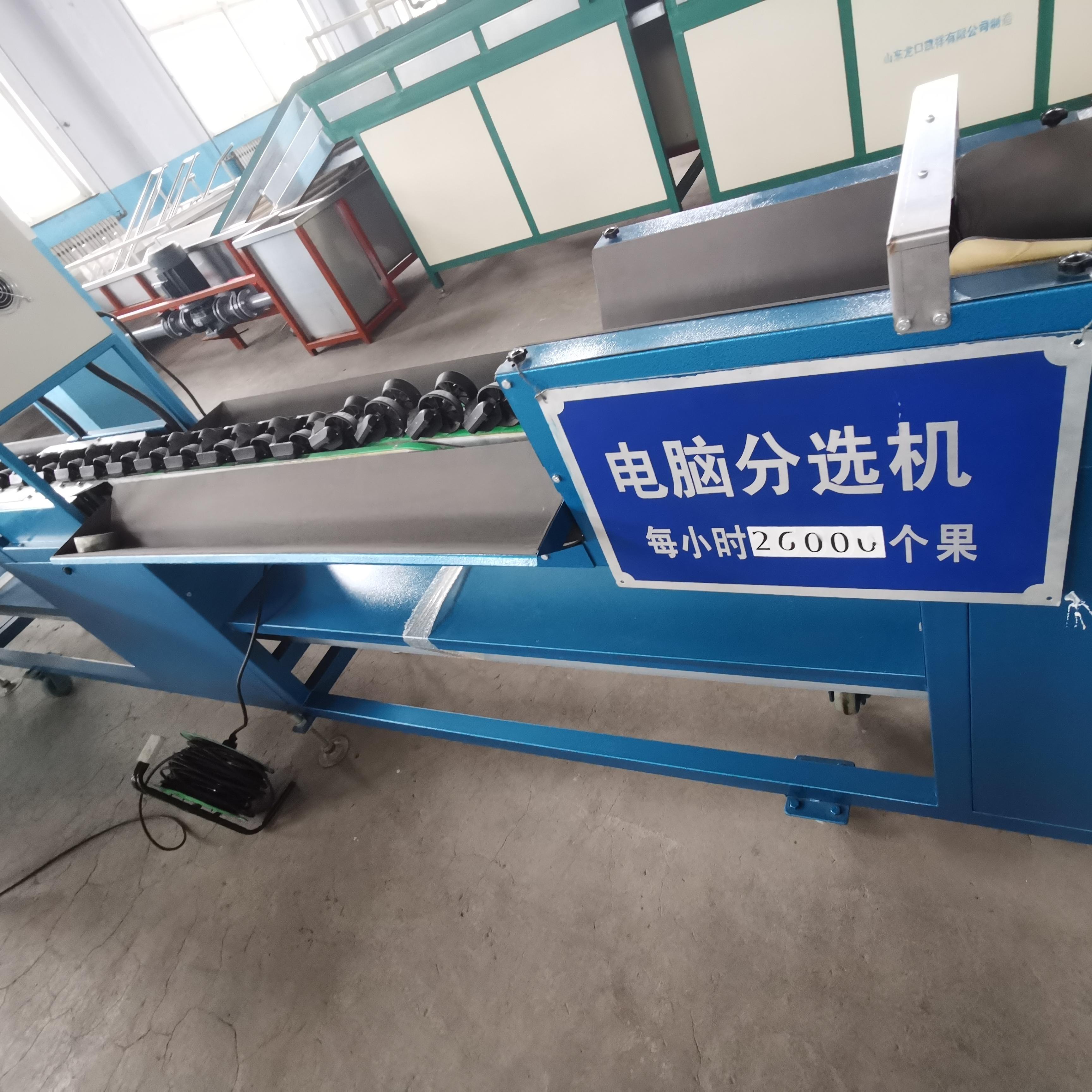 油桃电子选果机 电子秤重电脑分级设备