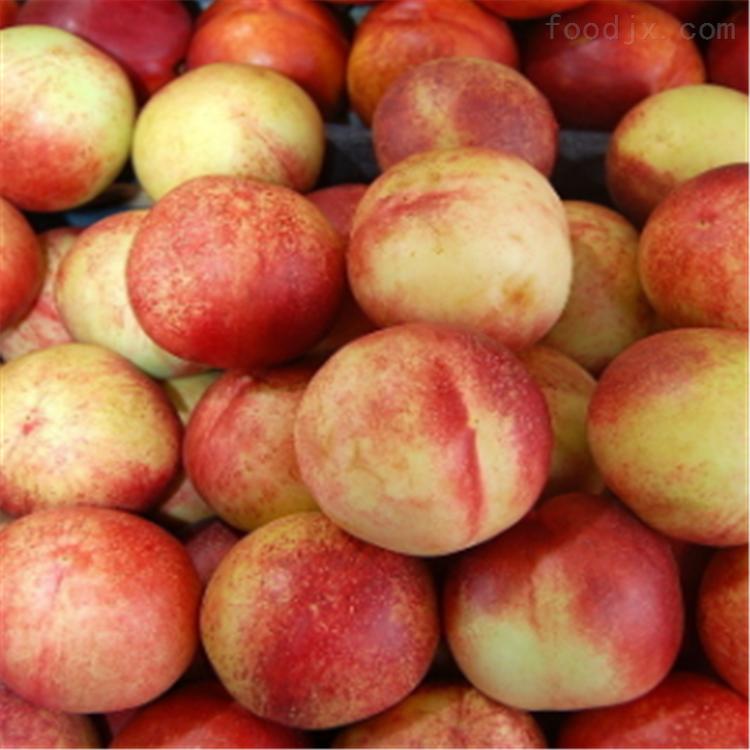 如何挑选桃子大小唐山水果分选机