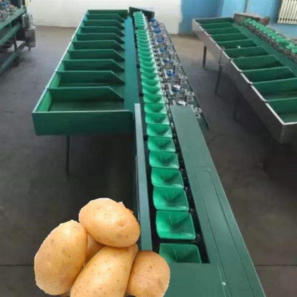 河北甜瓜分选机挑果蔬大小的设备省时省力