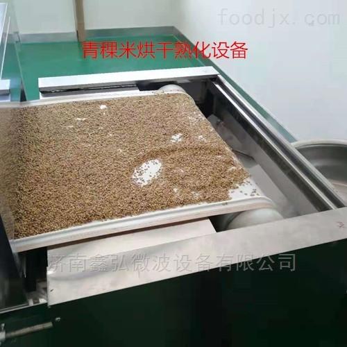 青海青稞米微波烘干熟化设备