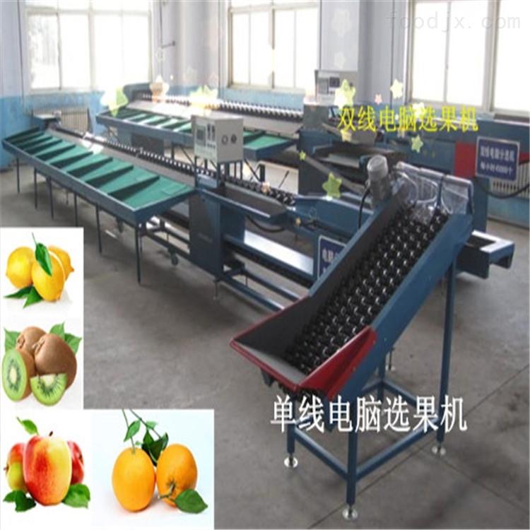 猕猴桃电子选果机 电脑分选大小的机器