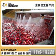 CXP-L-GRP厂家定制 葡萄加工生产线 浓缩汁生产设备