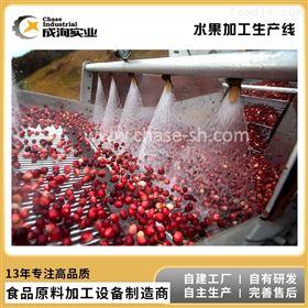 CXL-GZ桃李杏 果蔬果汁加工 NFC纯果汁成套生产线