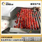 调味番茄酱整套生产线 番茄沙司加工设备
