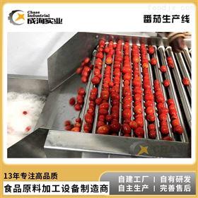 CXL-GZ调味番茄酱整套生产线 番茄沙司加工设备