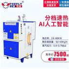 LDR0.065-0.7面积700平方纺织厂加湿用48KW电蒸汽发生器