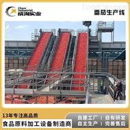 CXP-L-TMT厂家定制 番茄酱生产线 番茄沙司加工设备