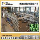 定制 果汁饮料生产线 番茄青梅汁生产设备