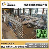 CXP-BOTTLE定制 果汁饮料生产线 番茄青梅汁生产设备