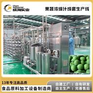 CXL-GZ樱桃去核打浆机 樱桃浓缩汁生产线