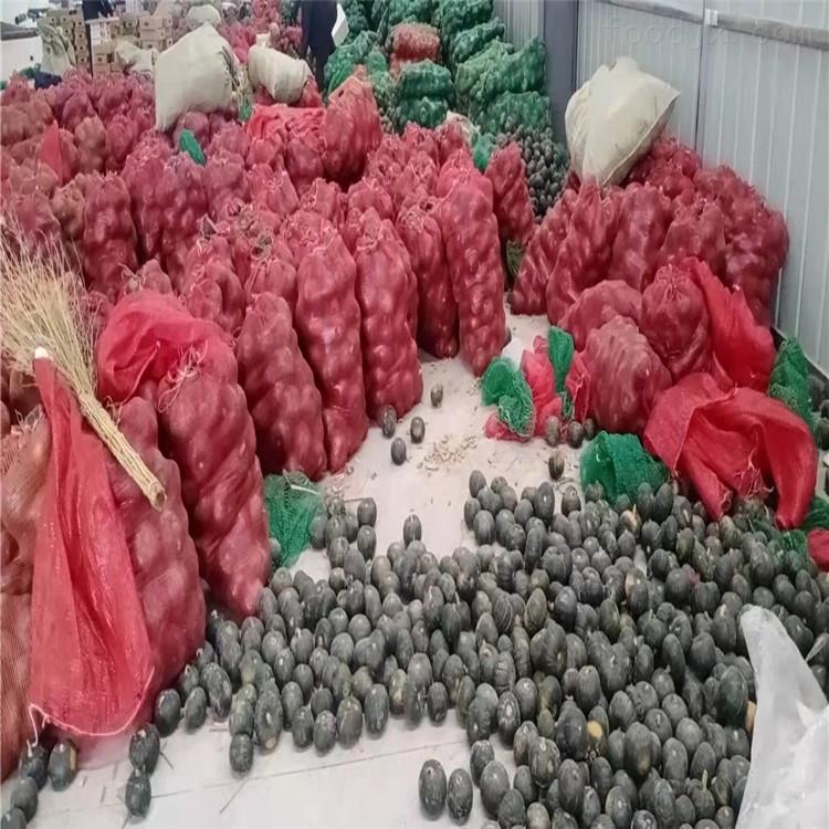 贝贝南瓜分大小的机器果蔬分级重量分选