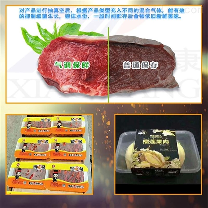 立式气调保鲜真空机包装生鲜肉类