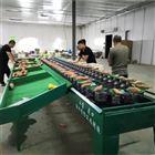 XGJ-SZ安徽泗县红薯分选机  机械分选 速度快