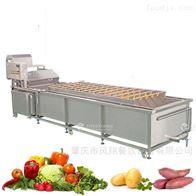 WASP-3000凤翔 大型洗菜机果蔬汽泡喷淋式清洗机