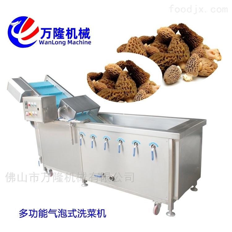 经济型香菇清洗机设计合理