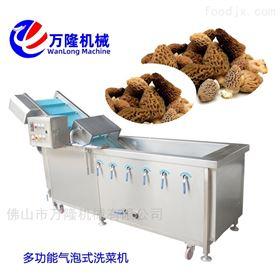 QB-25经济型香菇清洗机设计合理