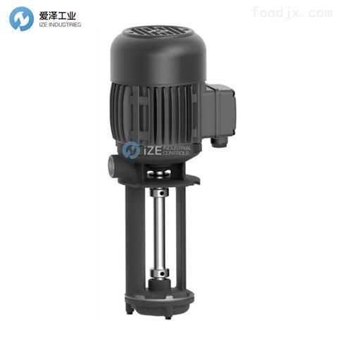BRINKMANN泵TS13/300+001