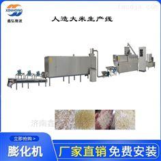 XH-65型自热米饭设备 人造大米膨化机生产线