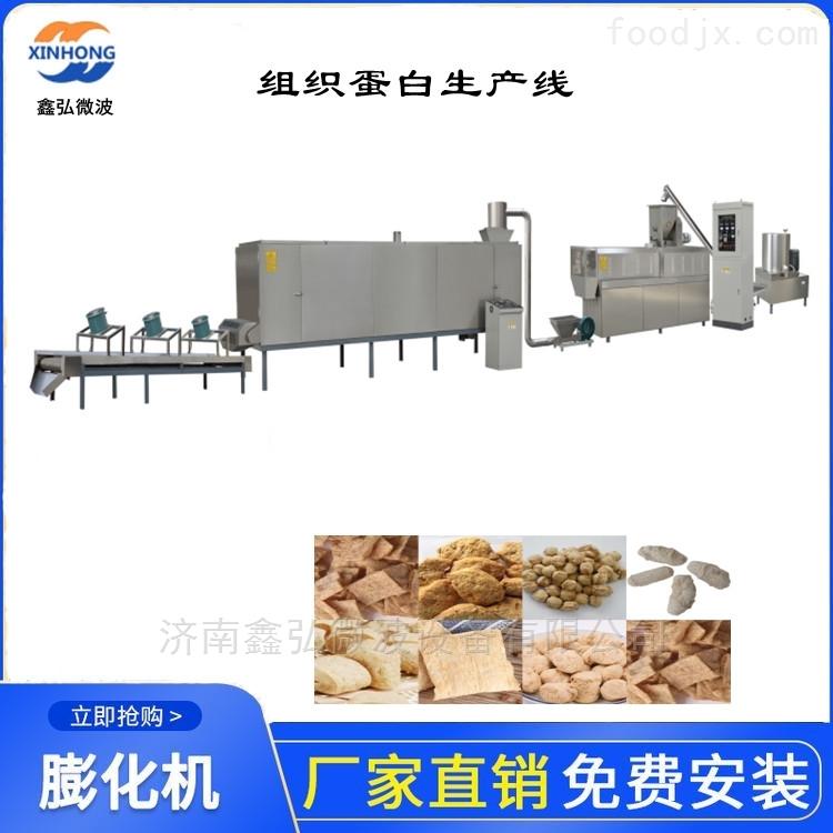 大豆蛋白加工设备 手撕素肉膨化生产线