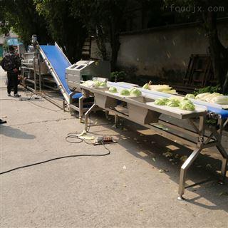 净菜加工流水线设备 蔬菜切割清洗风干线