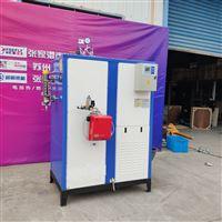 立浦燃气蒸汽发生器30毫克 全预混超低氮
