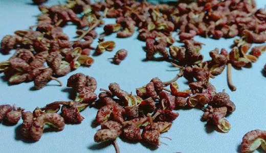 花椒深加工產品市場占比低 先進生產線將成重要助推力