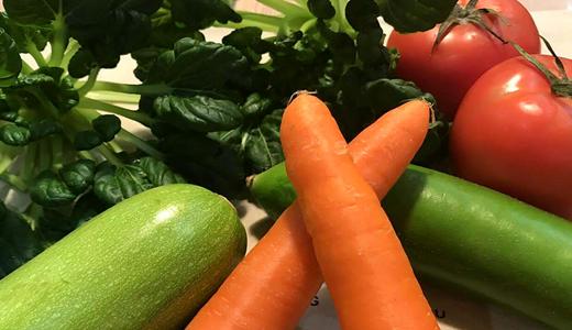 貴州生態特色食品產業優化升級 自動化、標準化趨勢明顯