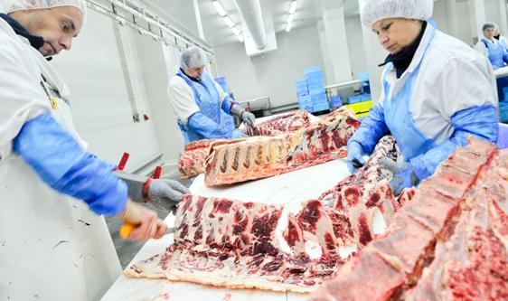 畜禽屠宰標準化轉型加速 提升肉類衛生和質量安全水平