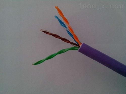 灵璧县高温计算机电缆ZR-DJFPFP2*2*1.0