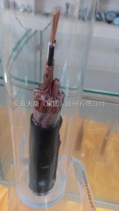 天台县防爆伴热电缆DKW-PF-220V-30W安徽天康