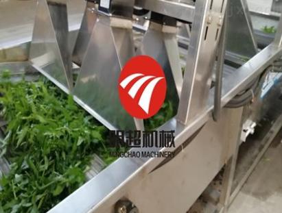 净菜加工生产线
